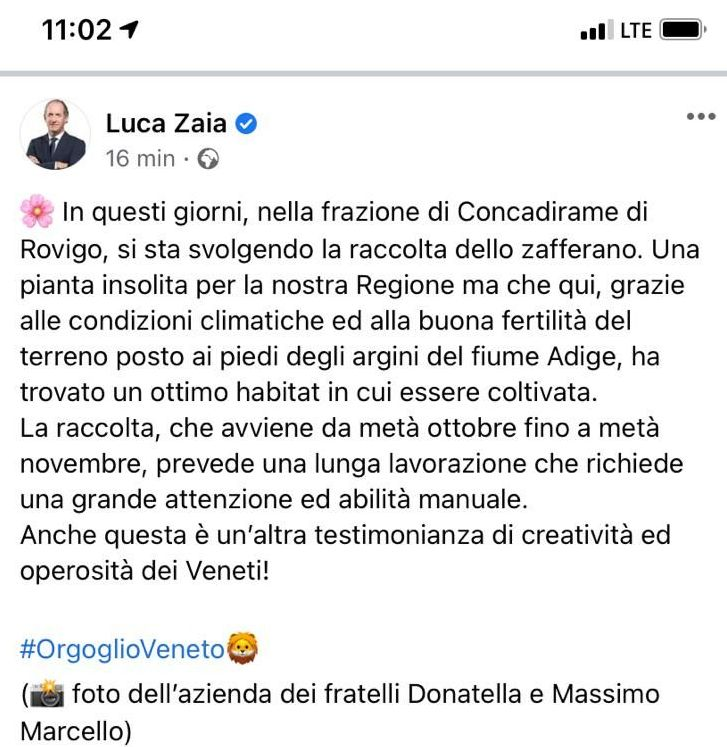 Post Zaia Zafferano polesano
